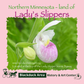 preview_lady-slipper