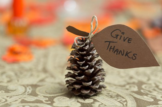Thanksgiving DIY Decor