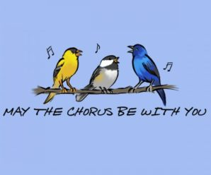 Celebrate National Bird Day With A Song